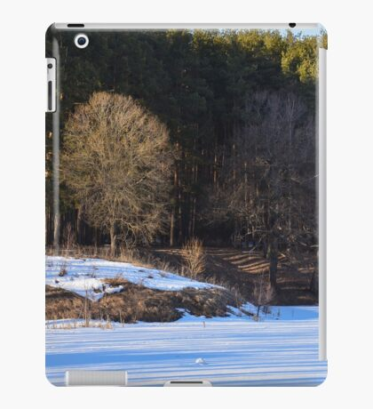 Spring Scape iPad Case/Skin