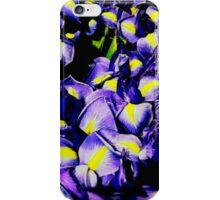 Iris x hollandica iPhone Case/Skin