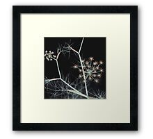 Night Whispers Framed Print