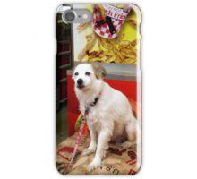 Dog At Carnival iPhone Case/Skin