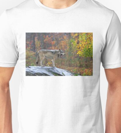 Timber Wolf in the rain Unisex T-Shirt