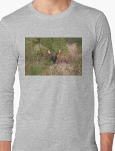 Bull Moose in Algonquin Park, Canada Long Sleeve T-Shirt