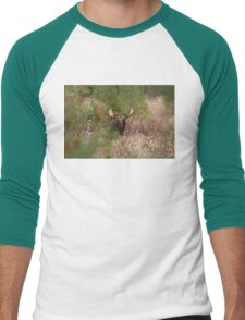 Bull Moose in Algonquin Park, Canada Men's Baseball ¾ T-Shirt