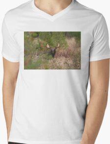 Bull Moose in Algonquin Park, Canada Mens V-Neck T-Shirt