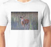 Early Morning White tailed Buck Unisex T-Shirt