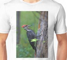 Pileated Woodpecker Portrait Unisex T-Shirt