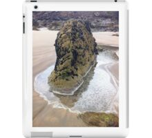 Rock on sandy beach  iPad Case/Skin