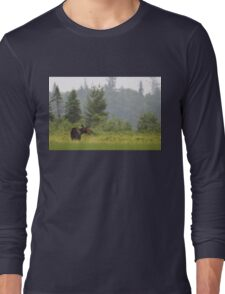 Grassy marsh moose - Algonquin Park, Canada Long Sleeve T-Shirt
