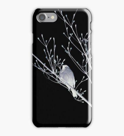 NightBirds Song iPhone Case/Skin