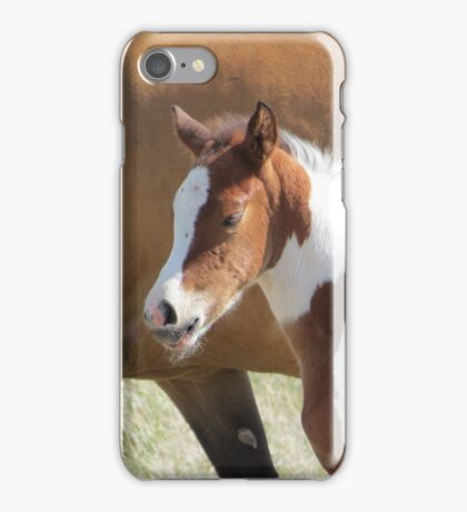 Hi...I Already Have Wiskers!! iPhone Case/Skin