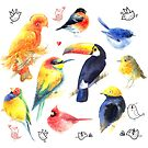 Watercolor a variety of birds  by Tanor