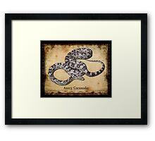 Anery Cornsnake Framed Print