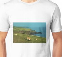 Dingle Peninsula Unisex T-Shirt