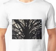 Sun behind the branches Unisex T-Shirt