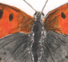Small Copper butterfly Sticker