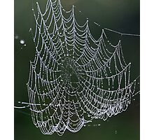 A web made of pearls ! Photographic Print