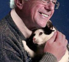 Cat and Bernie Sticker