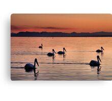 Pelicans Sunset Salton Sea Canvas Print