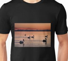 Pelicans Sunset Salton Sea Unisex T-Shirt