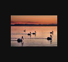 Pelicans Sunset Salton Sea Unisex T-Shirt