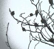 Spooky BLACK BIRD TREE Sticker