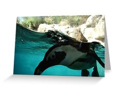 I SEE YOU PENGUIN! Greeting Card