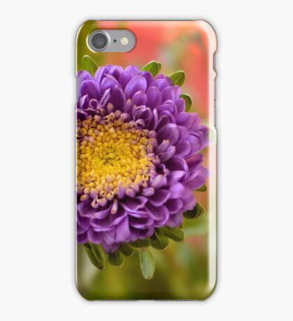 Spring Flowers iPhone Case/Skin