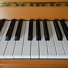 Section of Yamaha Piano Keyboard by EasterDaffodil