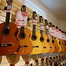 Guitar Sale by kathrynsgallery