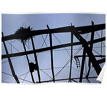 Silhouette Of An Bird Nest On A Damaged Metal Roof Frame | East Marion, New York Poster