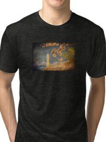 The Washington Monument Tri-blend T-Shirt