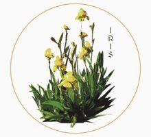 Flower Series  - Iris with transparent background Kids Tee