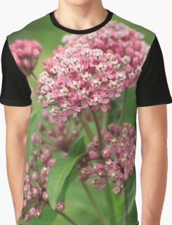 Beautiful blooming Milkweed loved by Monarchs Graphic T-Shirt