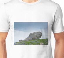 Large Boulder Deposited by a Glacier in an Alpine Meadow Unisex T-Shirt