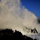 Wild Waves! by Randy Richards
