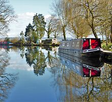 Canal Boat at Grand Western Canal by Joanne Pickering