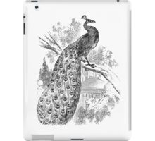 Vintage Peacock Bird Illustration Retro 1800s Black and White Image iPad Case/Skin