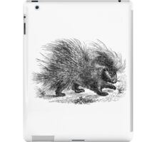 Vintage Porcupines Illustration Retro 1800s Black and White Porcupine Image iPad Case/Skin