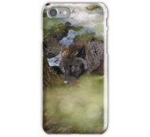 Sleeping Black wolf iPhone Case/Skin