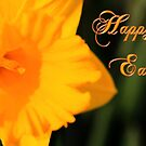 Happy Easter Yellow Daffodil Spring Flower by Shelley Neff