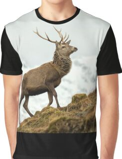 Red Deer Stag in Winter Graphic T-Shirt