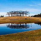 Skogskyrkogården - UNESCO World Heritage Site by Paul Davis