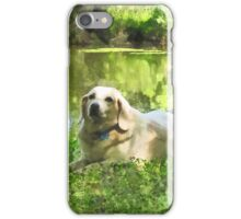 Yellow Lab by Lake iPhone Case/Skin