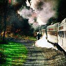 Taking Autumn by Train  by ArtbyDigman