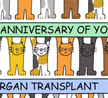 Cats celebrating the anniversary of your organ transplant. Sticker