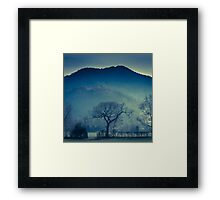 Tree in Borrowdale Valley, Lake District Framed Print