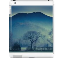 Tree in Borrowdale Valley, Lake District iPad Case/Skin