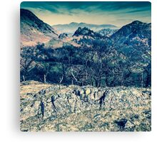 Borrowdale Valley, Lake District Canvas Print