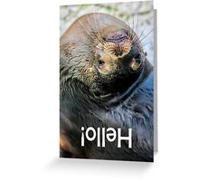 Upside-down Hello! Greeting Card