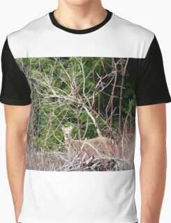 White Tailed Deer through Brush Graphic T-Shirt